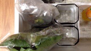 野菜室前面の仕切り内側にペットボトルを置く